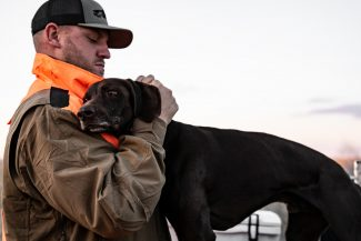 MISSOURI-GSP-HUNTING-DOGS